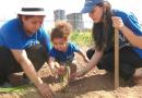 Valencia – Productos de la huerta en beneficio de las familias.