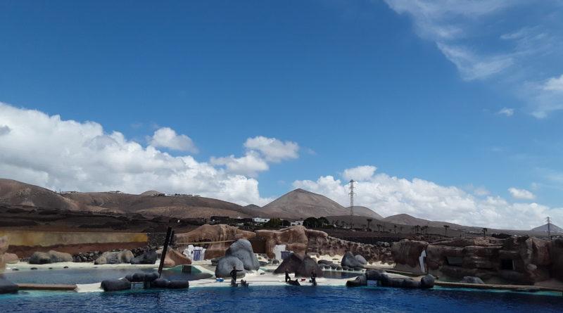 Excursión Miraistas – AME Lanzarote